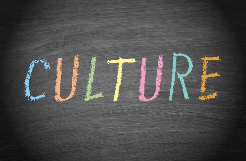 Organiyational Culture